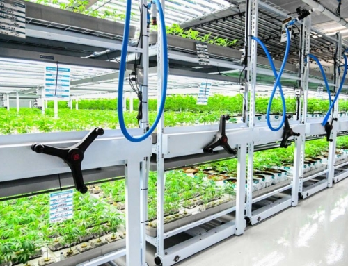 10 Reasons to Adopt the Mobile Cultivation System